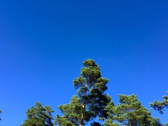 Finlande méridionale, Finlande : photo1.jpg