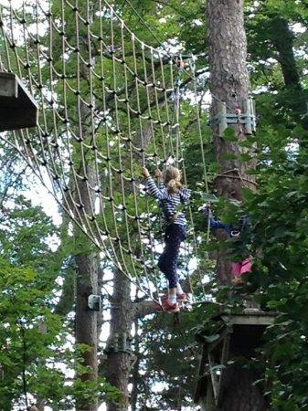 TreeZone Aviemore: Climbing the net