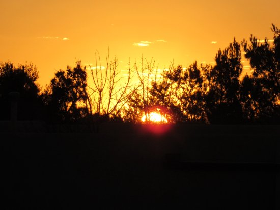 Corrales, NM: Sunrise from the backyard