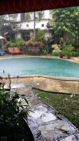 Tamukami Hotel: Rain over the pool