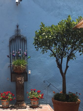 Casa Cinco Patios ภาพถ่าย