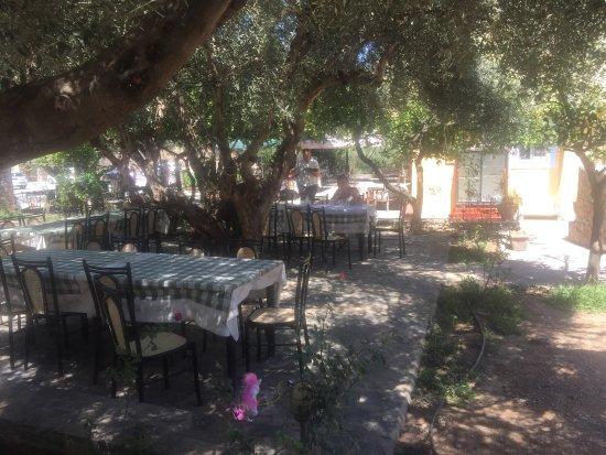 Paradeisos Taverna : Doskonale miejsce dla rodziny na każdy posiłek