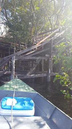 Juma Amazon Lodge: Dock, with Patio above and communal/bar room just to left