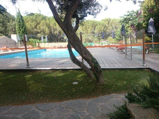 Les Jardins de Cassis: IMG_20160714_093317_large.jpg