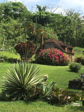 Trois-Ilets, Martinica: photo4.jpg