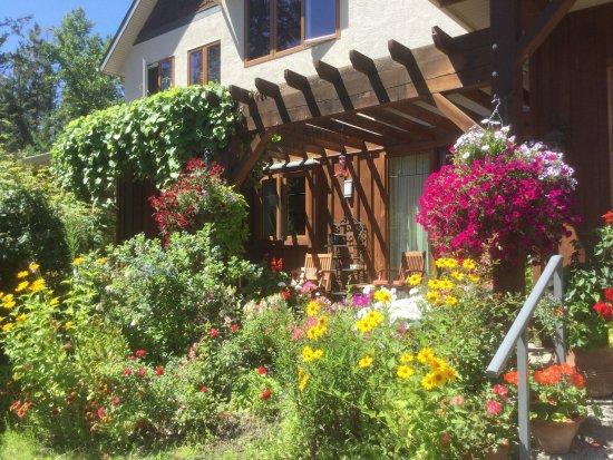 Catbird Ridge Summerland Bed and Breakfast: Flowers galore.