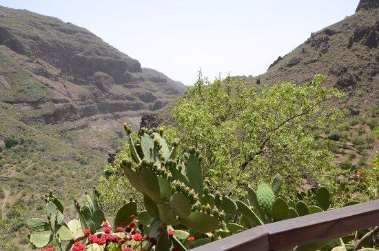Ingenio, España: Widok ze ścieżki wokół góry Montana de las Tierras na wąwóz Guayadeque