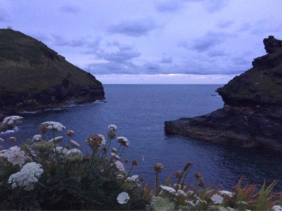 Boscastle, UK: Herrlicher Pfad wo einem die Brise verrät, dass es nicht mehr weit bis zur Meeresbucht ist, wo s