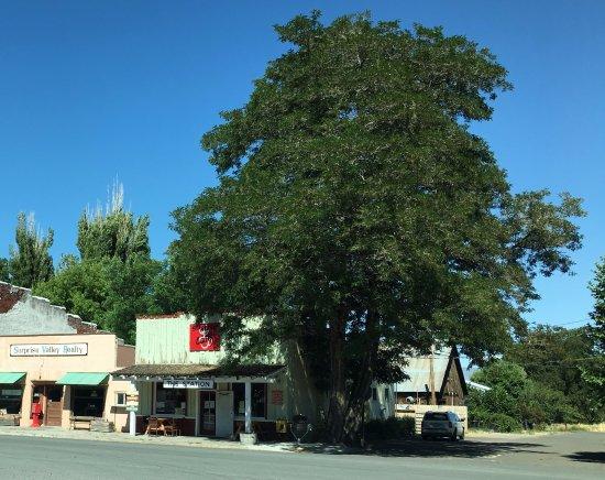 Cedarville, Californië: The Station