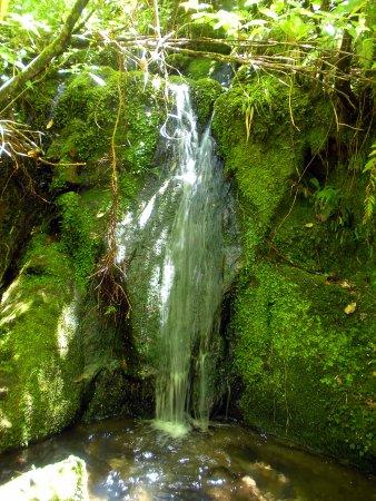 Abel Tasman National Park, Nueva Zelanda: Abel Tasman Coast Track