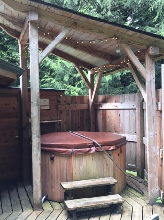 Stormking Spa at Mt. Rainier: Private hot tub on each porch
