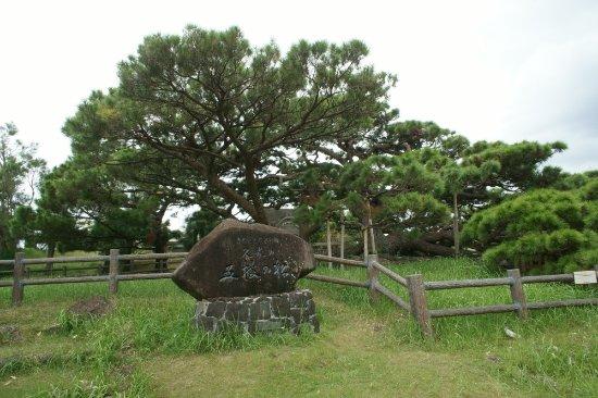 Kumejima-cho Resmi