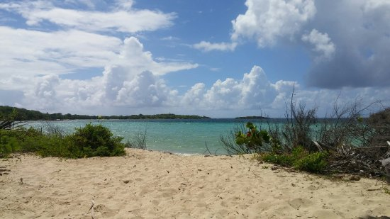 Vieques National Wildlife Refuge: 20160714_102354_large.jpg