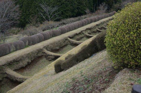 Ruins Yamanaka Castle : こんな堀もありました。城全体がこんな感じなので楽しいですよー