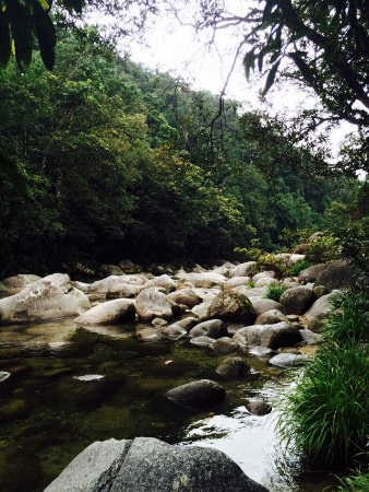 Daintree Region, Australië: photo1.jpg