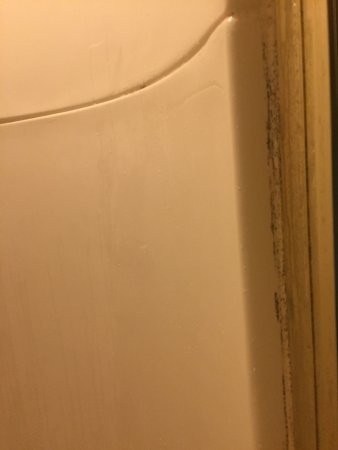Edgewood, MD: Shower mold