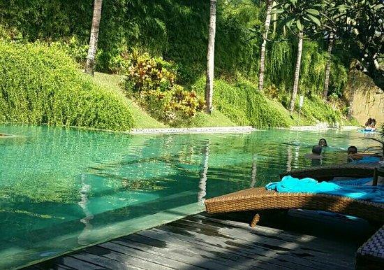 Centra Taum Seminyak Bali: 8a09056f-233e-4566-b4d2-6213149c61c8_large.jpg