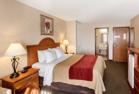 Comfort Inn Lexington: Miscellaneous