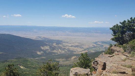 Grand Mesa: 20160714_114018_large.jpg
