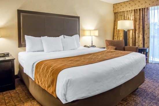 Comfort Inn and Suites Lincoln City : Guest room