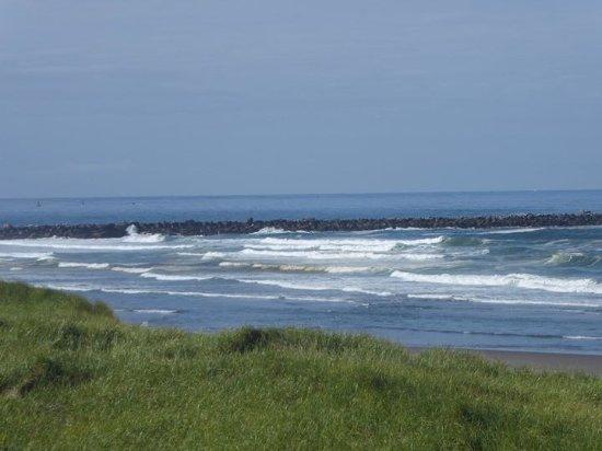 Ocean Shores, WA: View from balcony