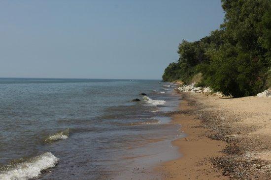Saugatuck, MI: Beach Walk