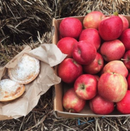 Blackheath, Australien: Fresh apple pies