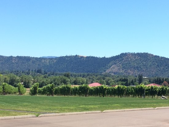 Roseburg, OR: Vista at Winery