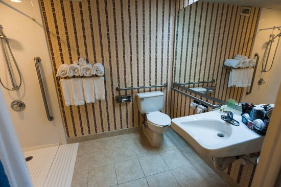 Swedesboro, Nueva Jersey: Wheelchair Accessible Bathroom
