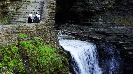 Elmira, Нью-Йорк: Watkins Glen State Park