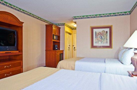 Elk Grove Village, Ιλινόις: Double Bed Guest Room