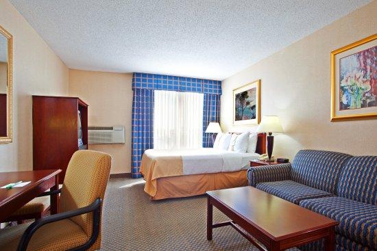 Elk Grove Village, Ιλινόις: Guest Room