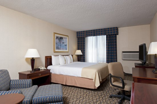 Spacious King Room at Holiday Inn Chicago Elk Grove