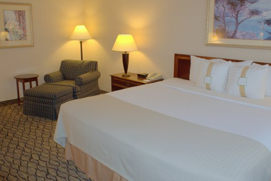 Holiday Inn Chicago Elk Grove: King Bed Guest Room at Holiday Inn Elk Grove Near O'Hare Airport