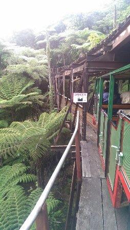 Коромандел, Новая Зеландия: IMAG3861_large.jpg
