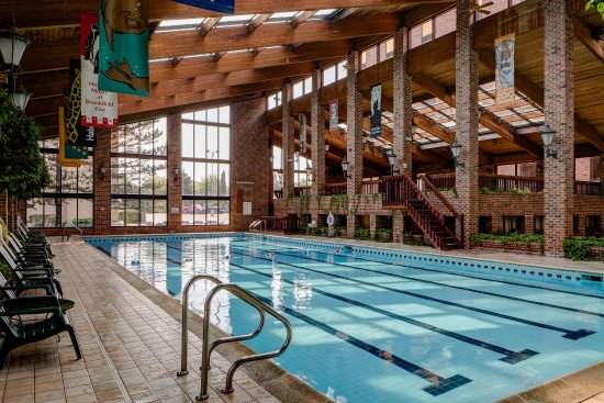 Countryside, IL: Olympic Size Indoor Pool