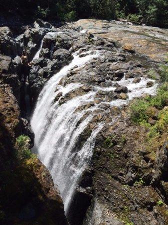 Nanaimo, Kanada: Englishman River Falls Provincial Park