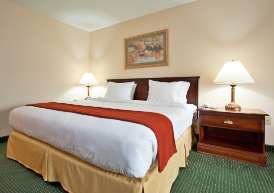 Mount Pleasant, Pensilvania: King Bed Guest Room