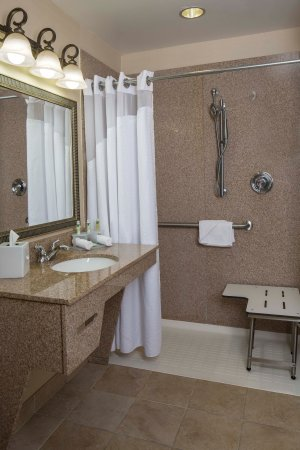 Holiday Inn Express Hotel & Suites Brevard: Guest Bathroom