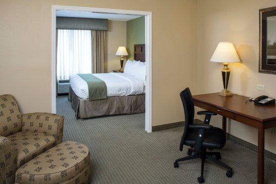 Holiday Inn Express Hotel & Suites Brevard: Suite