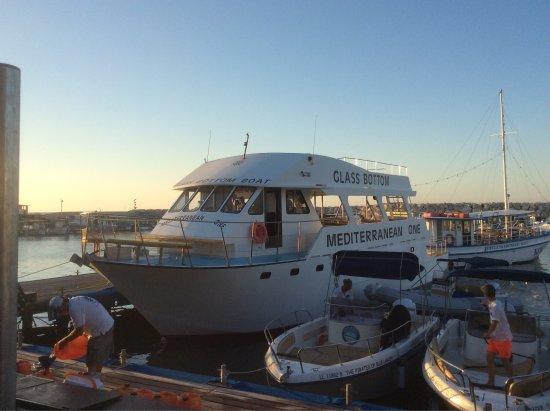 Mediterranean One Glass Bottom Boat