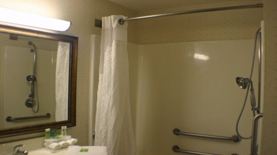 Holiday Inn Express & Suites Ex I-71/ Oh. State Fair/Expo Center: Bathroom for guests with disabilities.