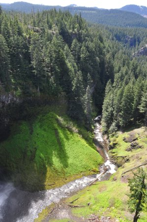 Oakridge, OR: Waterfall flowing into Salt Creek