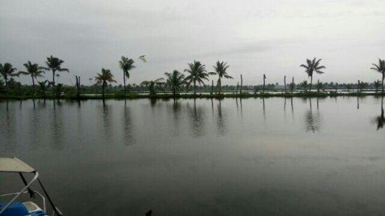 Kondai Lip Backwater Heritage Resort: goibibo_1468561493953_large.jpg