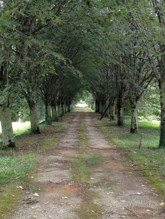 La Roche Chalais, Frankrike: Driveway