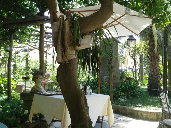 Hotel Palazzo Murat: Excellent Courtyard lunch!