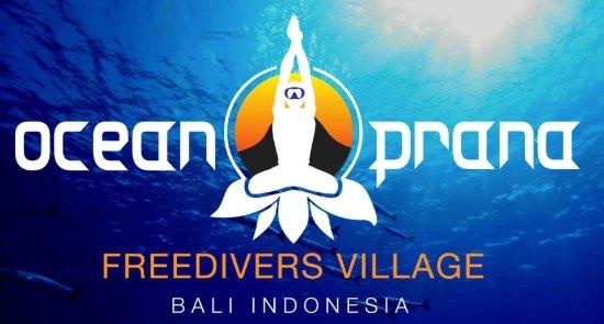 Ocean Prana Freediving & Yoga: Ocean Prana