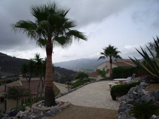 Alcalali Photo