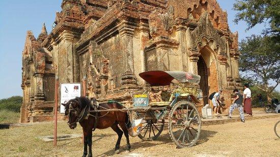 The Hotel Bagan Umbra : 20151226_103302_large.jpg