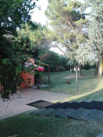 Arqua Polesine, Ιταλία: IMG_20160714_193449_large.jpg